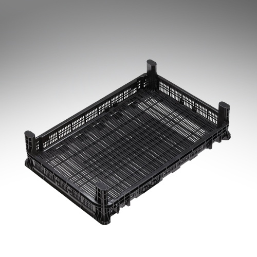 30 litre bulb forcing tray